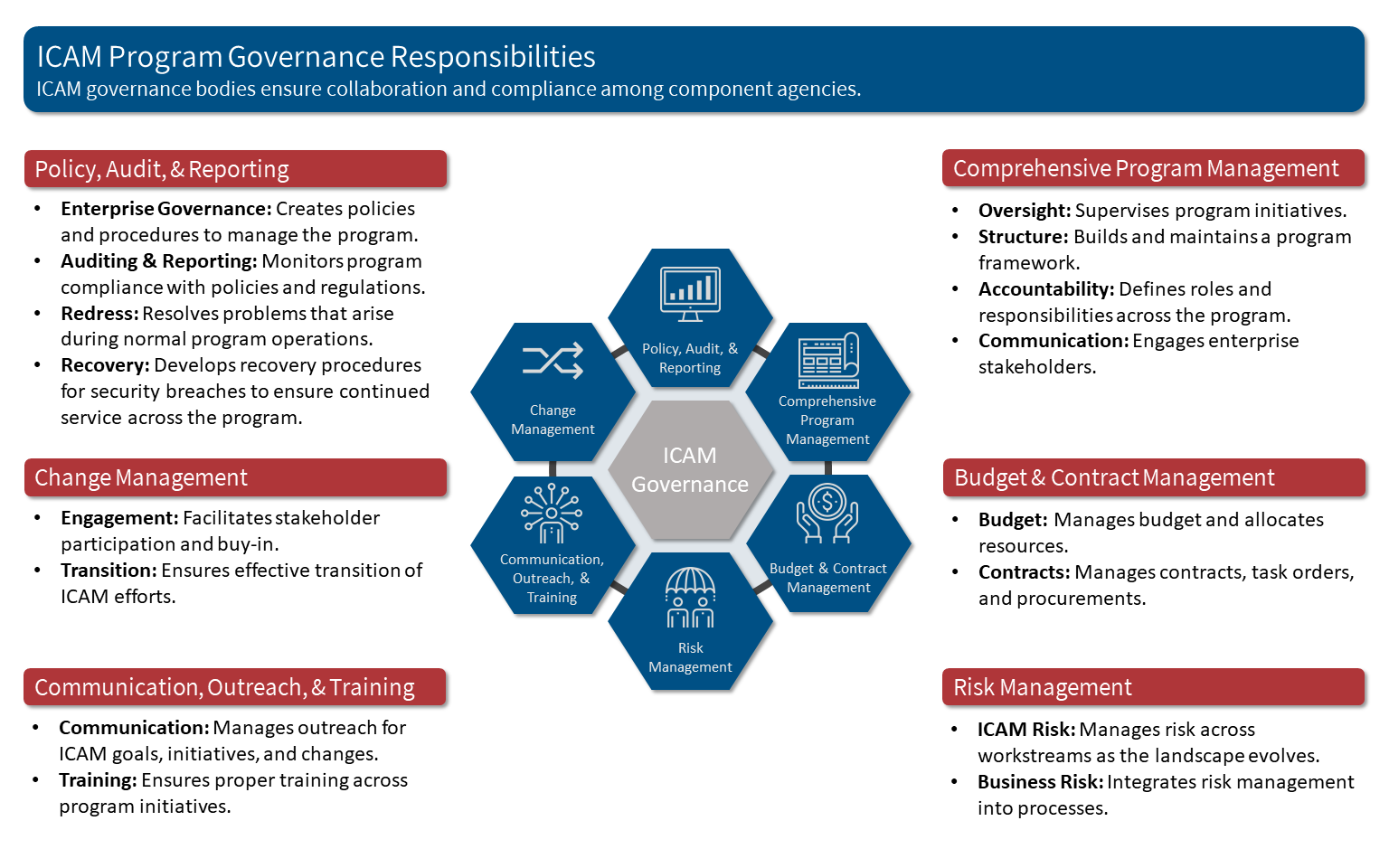 ICAM Governance Responsibilities